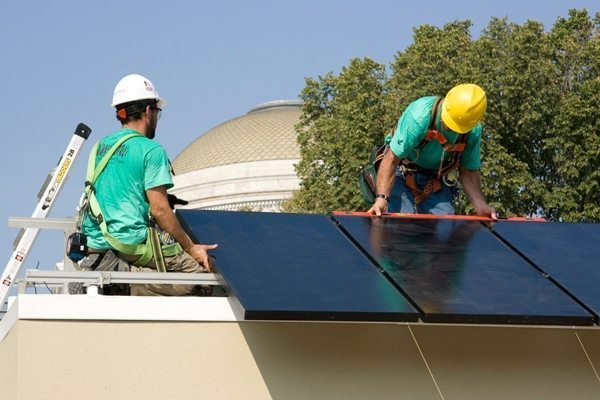 Making trees and solar work better together