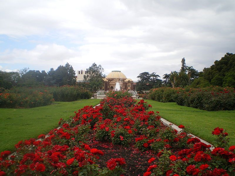 800px-Exposition_Park_Rose_Garden_(Los_Angeles)