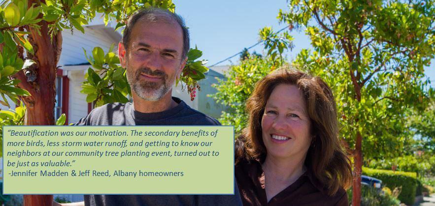 Albany's Tree Heroes