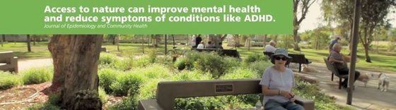 """""""Investing From the Ground Up: Community Tree Success"""" video sprouts!"""