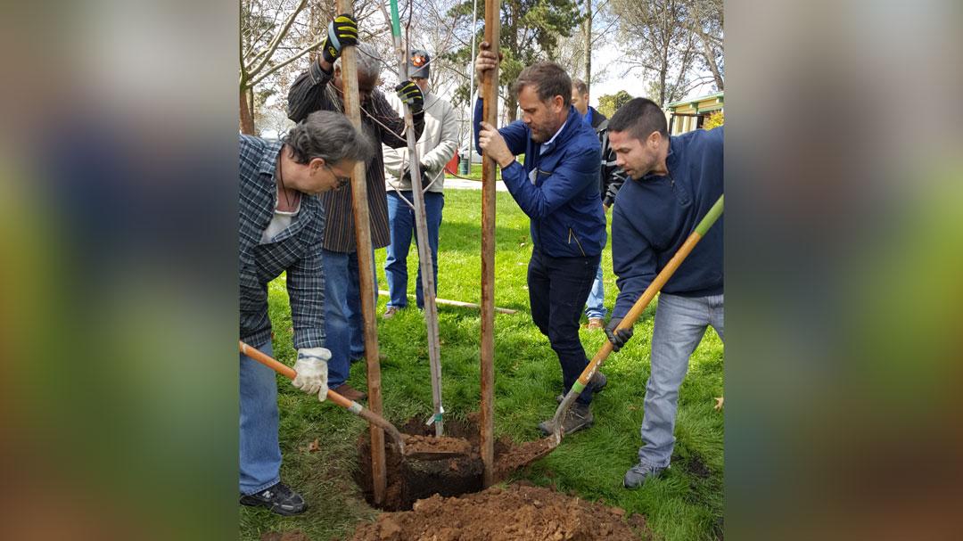 Cosumnes-CSD-Tree-Steward-Workshop6