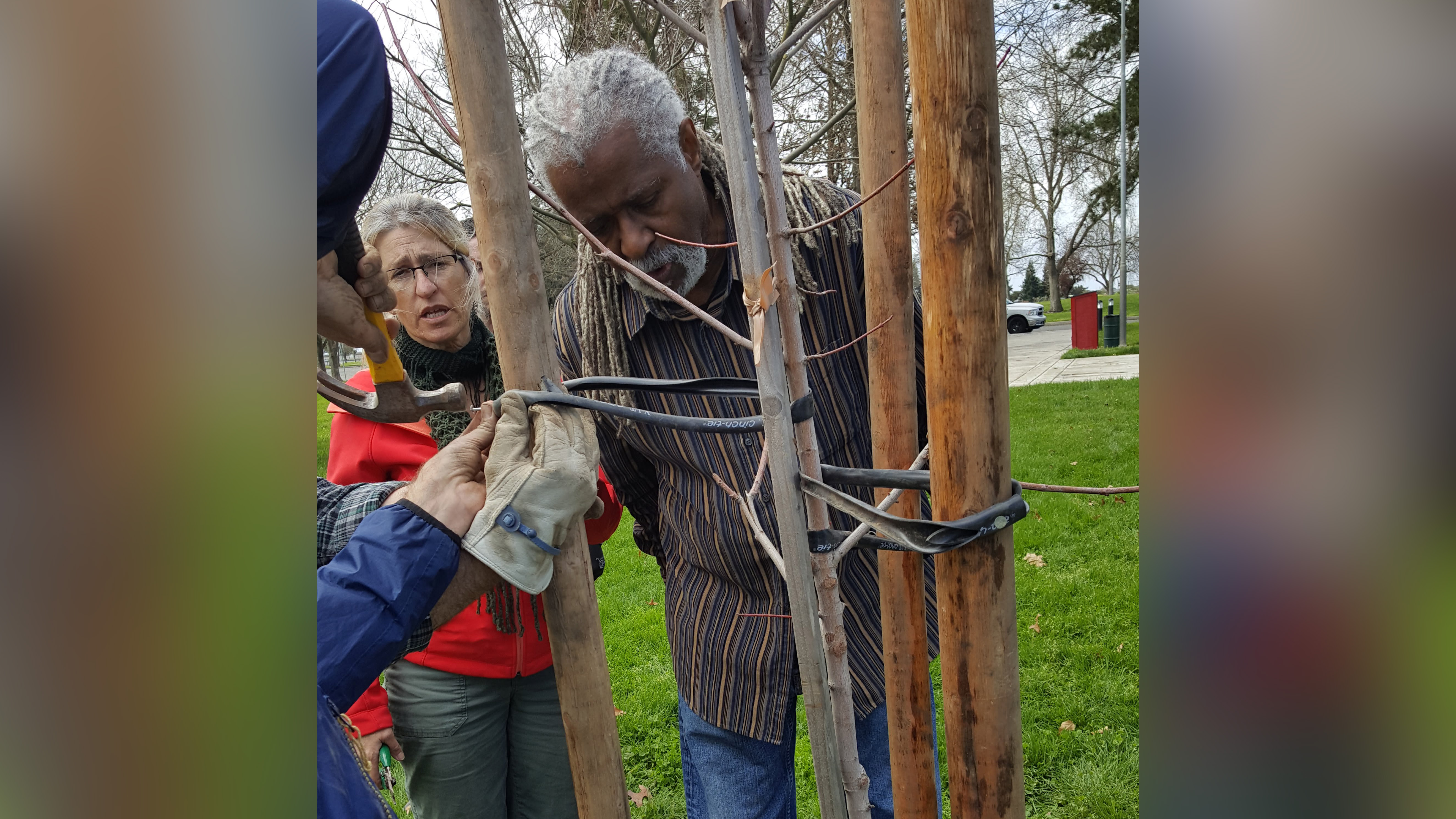 Cosumnes-CSD-Tree-Steward-Workshop7