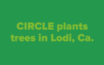 Lodi tree planting